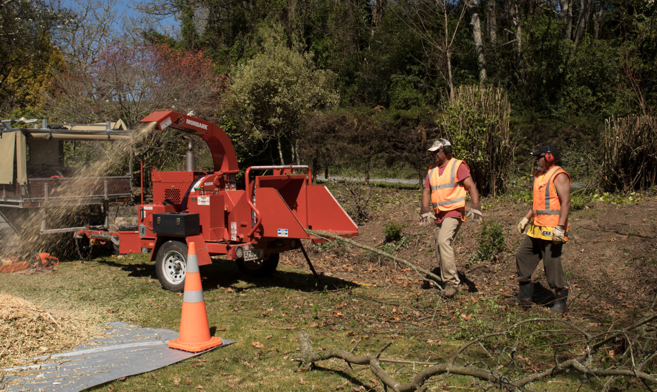 Tree & debris chipping & mulching